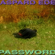 "GASPARD EDEN SHARES ""PASSWORD"""